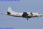 Chofu Spotter Ariaさんが、厚木飛行場で撮影した海上自衛隊 P-3Cの航空フォト(飛行機 写真・画像)