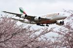 リーペアさんが、成田国際空港で撮影したエミレーツ航空 A380-861の航空フォト(飛行機 写真・画像)
