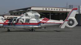 航空見聞録さんが、広島西飛行場で撮影した広島市消防航空隊 SA365N1 Dauphin 2の航空フォト(飛行機 写真・画像)