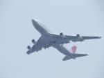 mealislandさんが、成田国際空港で撮影した日本航空 747-446F/SCDの航空フォト(写真)