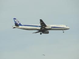mealislandさんが、羽田空港で撮影した全日空 A321-131の航空フォト(飛行機 写真・画像)