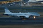 いぶき501さんが、羽田空港で撮影したエイビエーション・リンク・カンパニー A319-111の航空フォト(写真)