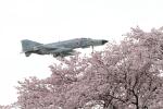 ケロたんさんが、岐阜基地で撮影した航空自衛隊 F-4EJ Phantom IIの航空フォト(写真)
