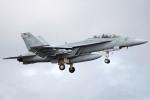 apphgさんが、厚木飛行場で撮影したアメリカ海軍 F/A-18F Super Hornetの航空フォト(写真)