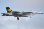 apphgさんが、厚木飛行場で撮影したアメリカ海軍 F/A-18E Super Hornetの航空フォト(写真)