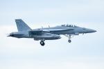 うめやしきさんが、厚木飛行場で撮影したアメリカ海軍 EA-18G Growlerの航空フォト(飛行機 写真・画像)