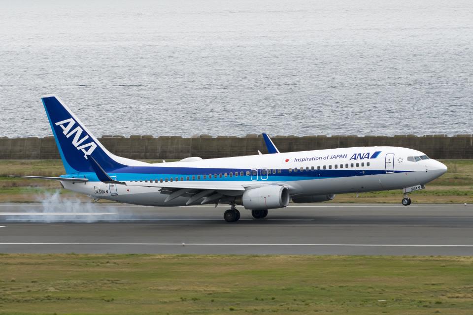 ShiShiMaRu83さんの全日空 Boeing 737-800 (JA56AN) 航空フォト