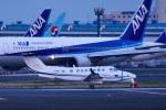 パンダさんが、成田国際空港で撮影したノエビア B300の航空フォト(写真)
