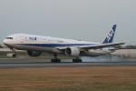 海苔さんが、伊丹空港で撮影した全日空 777-381の航空フォト(写真)