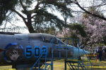 ななにさんが、熊谷基地で撮影した航空自衛隊 F-104J Starfighterの航空フォト(写真)