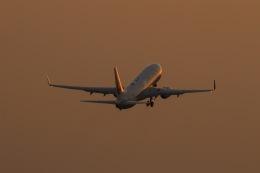 036さんが、広島空港で撮影した日本航空 737-846の航空フォト(飛行機 写真・画像)