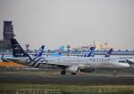 タミーさんが、成田国際空港で撮影した中国東方航空 A321-231の航空フォト(写真)