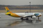 セブンさんが、成田国際空港で撮影したセブパシフィック航空 A330-343Xの航空フォト(飛行機 写真・画像)