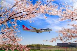 allnipponairwaysさんが、成田国際空港で撮影したカーゴルクス・イタリア 747-4R7F/SCDの航空フォト(写真)
