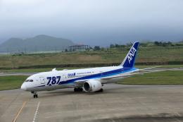 おっしーさんが、石垣空港で撮影した全日空 787-8 Dreamlinerの航空フォト(飛行機 写真・画像)