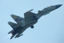 apphgさんが、ソウル空軍基地で撮影したロシア空軍 Sukhoi Su-35/37の航空フォト(飛行機 写真・画像)