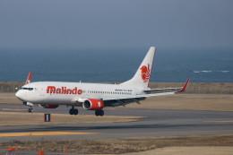 kij niigataさんが、新潟空港で撮影したマリンド・エア 737-8GPの航空フォト(写真)