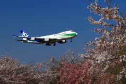 まったり屋さんが、成田国際空港で撮影した日本貨物航空 747-4KZF/SCDの航空フォト(写真)