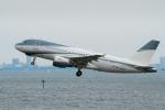 たかしさんが、羽田空港で撮影したエイビエーション・リンク・カンパニー A319-111の航空フォト(写真)