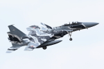 isiさんが、茨城空港で撮影した航空自衛隊 F-15DJ Eagleの航空フォト(写真)