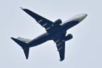 パンダさんが、成田国際空港で撮影したウェルズ・ファーゴ・バンク・ノースウェスト 737-7JV BBJの航空フォト(写真)