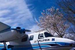 パンダさんが、成田国際空港で撮影したアジア航測 680E Commanderの航空フォト(飛行機 写真・画像)
