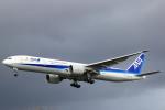 kenzy201さんが、ロンドン・ヒースロー空港で撮影した全日空 777-381/ERの航空フォト(写真)