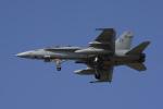 NOTE00さんが、三沢飛行場で撮影したアメリカ海兵隊 F/A-18D Hornetの航空フォト(写真)