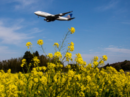Mame @ TYOさんが、成田国際空港で撮影したユナイテッド航空 747-422の航空フォト(写真)