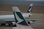 rjnsphotoclub-No.07さんが、中部国際空港で撮影したキャセイパシフィック航空 A340-313Xの航空フォト(飛行機 写真・画像)