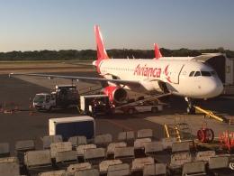 FlyHideさんが、エルサルバドル国際空港で撮影したTACA航空 A320-233の航空フォト(飛行機 写真・画像)