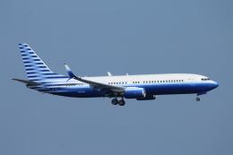 ceskykrumlovさんが、羽田空港で撮影したウェルズ・ファーゴ・バンク・ノースウェスト 737-8EQ BBJ2の航空フォト(飛行機 写真・画像)