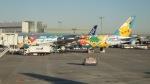Lovely-Akiさんが、羽田空港で撮影した全日空 777-381の航空フォト(写真)