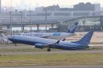 cherrywing787さんが、羽田空港で撮影したEIEイーグル 737-8EQ BBJ2の航空フォト(写真)