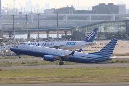 cherrywing787さんが、羽田空港で撮影したEIEイーグル 737-8EQ BBJ2の航空フォト(飛行機 写真・画像)