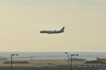 c59さんが、関西国際空港で撮影したEIEイーグル 737-8EQ BBJ2の航空フォト(写真)