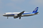 Orange linerさんが、羽田空港で撮影した全日空 A320-211の航空フォト(写真)