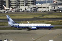 masa0420さんが、羽田空港で撮影したEIEイーグル 737-8EQ BBJ2の航空フォト(飛行機 写真・画像)
