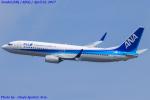 Chofu Spotter Ariaさんが、仙台空港で撮影した全日空 737-881の航空フォト(写真)