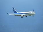 おっつんさんが、新石垣空港で撮影した全日空 737-881の航空フォト(飛行機 写真・画像)
