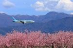 松本空港 - Matsumoto Airport [MMJ/RJAF]で撮影された大韓航空 - Korean Air [KE/KAL]の航空機写真