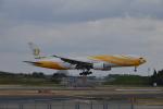 あにいさんが、成田国際空港で撮影したノックスクート 777-212/ERの航空フォト(写真)