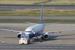 サリーちゃんのパパさんが、羽田空港で撮影したEIEイーグル 737-8EQ BBJ2の航空フォト(飛行機 写真・画像)