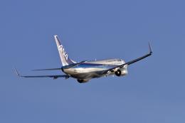 まっささんが、小松空港で撮影した全日空 737-881の航空フォト(飛行機 写真・画像)