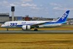 あしゅーさんが、伊丹空港で撮影した全日空 787-8 Dreamlinerの航空フォト(飛行機 写真・画像)