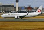 あしゅーさんが、伊丹空港で撮影した日本航空 737-846の航空フォト(飛行機 写真・画像)