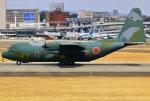あしゅーさんが、伊丹空港で撮影した航空自衛隊 C-130H Herculesの航空フォト(飛行機 写真・画像)