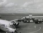 ぺペロンチさんが、羽田空港で撮影した日本航空 DC-8-55の航空フォト(写真)