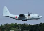 じーく。さんが、厚木飛行場で撮影した海上自衛隊 C-130Rの航空フォト(飛行機 写真・画像)