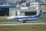 meijeanさんが、福岡空港で撮影したANAウイングス 737-54Kの航空フォト(写真)